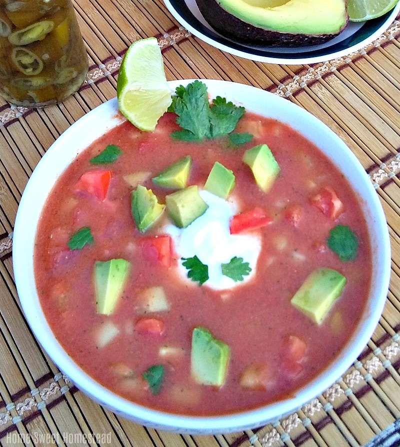 Salsa Gazpacho - Home Sweet Homestead