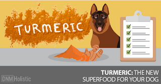 http://www.dogsnaturallymagazine.com/can-i-give-my-dog-turmeric/
