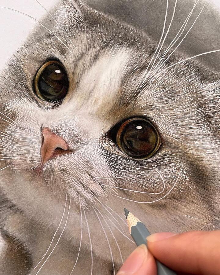 05-Big-eyed-cat-Haruki-Kudo-www-designstack-co