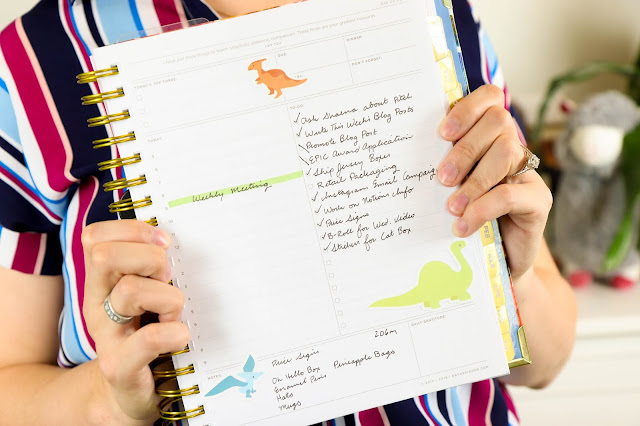 5 Reasons I Love the Day Designer Planner