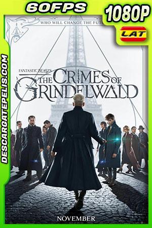 Animales fantásticos Los crímenes de Grindelwald (2018) 1080P 60 FPS Latino – Ingles