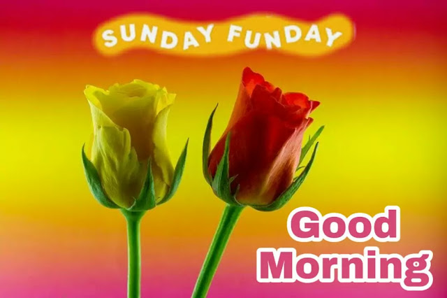 good morning sunday special