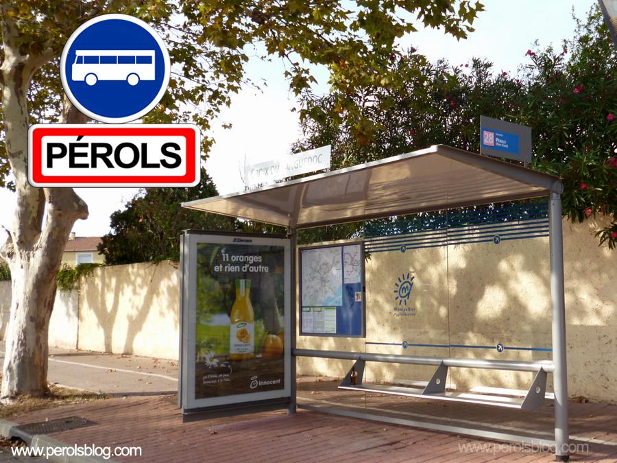 Bus TAM Croix du LAnguedoc