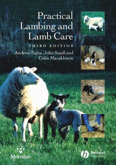 Practical Lambing and Lamb Care A Veterinary Guide - WWW.VETBOOKSTORE.COM