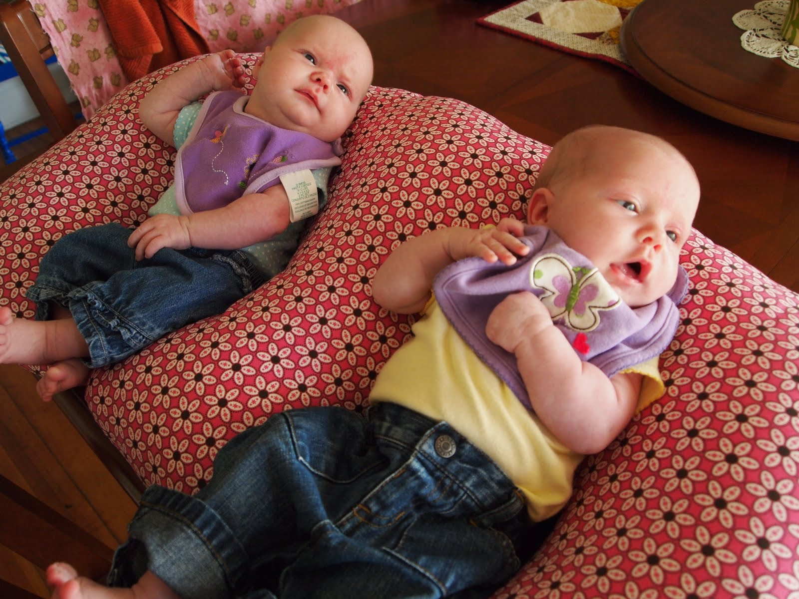 The Twin Boppy Wannabe Reality Daydream