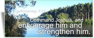 deuteronomy 3:28