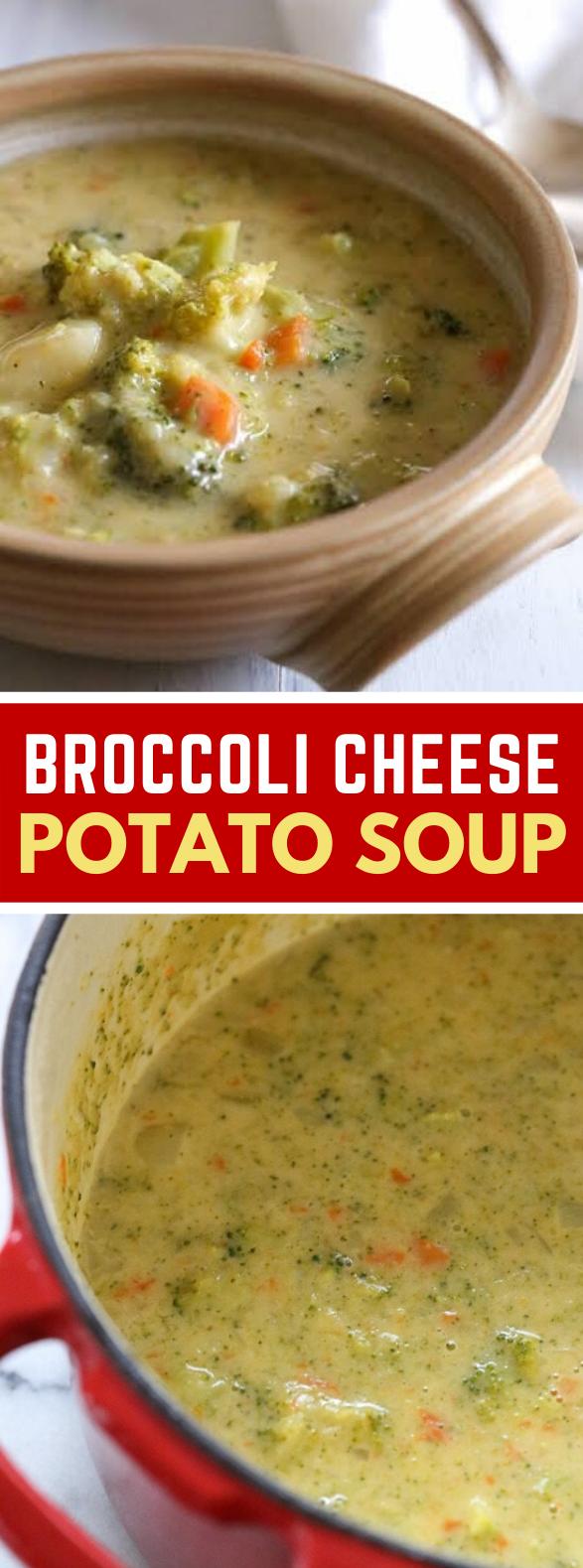 BROCCOLI CHEESE AND POTATO SOUP #vegetarian #healthy