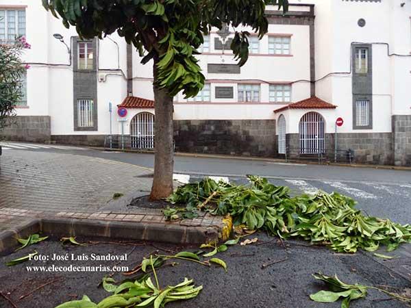 Las clases en Canarias se reanudan después del paso de la borrasca Emma, jueves  1 marzo