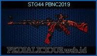STG44 PBNC2019