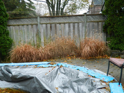 Toronto Gardening Services Bedford Park Backyard Fall Cleanup before by Paul Jung