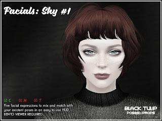 [Black Tulip] Poses - Facials - Shy #1 (Bento)