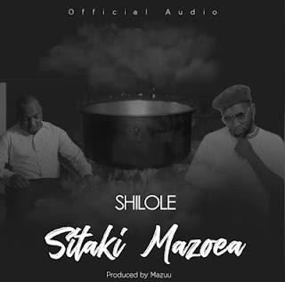 DOWNLOAD AUDIO |  Shilole - Sitaki Mazoea  MP3