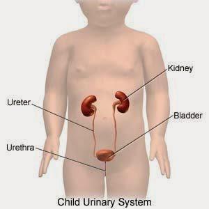 Obat Sakit Kencing Untuk Anak
