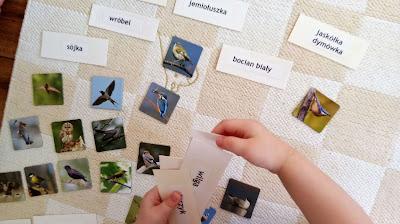 globalne czytanie czytanie metodą domana i memory