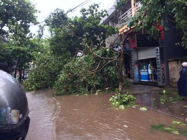 Bão Mirinae Đổ Bộ Gây Thiệt Hại Cho FPT Ninh Bình Và Nam Định 9