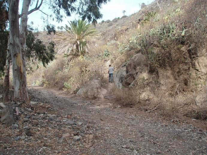 Inicio del Camino del Piquillo