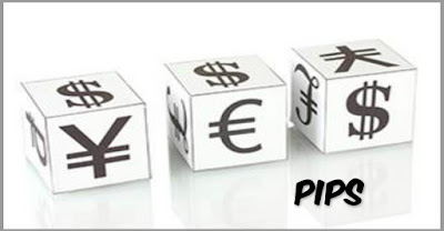 Forex Pip. How To Maximize Pips And Minimize Losses