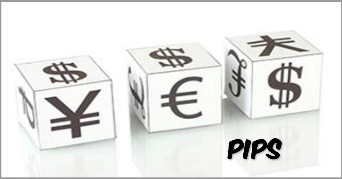 6 pip forex