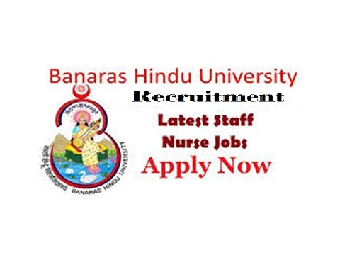 BHU Staff Nurse Jobs, Staff nurse Jobs, Nursing, Jobs, Recruitment, Notification,
