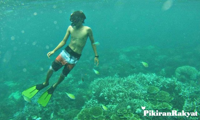 Dengan Hanya Rp 100 Ribu Sudah Dapat Mencoba Snorkeling Di Pantai Karang Bale, Carita