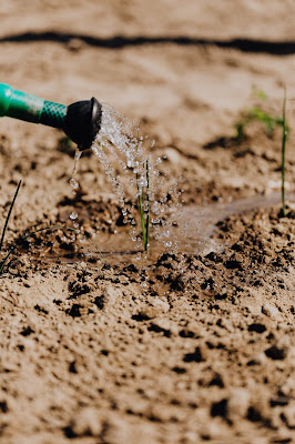 Horticulture Scheme
