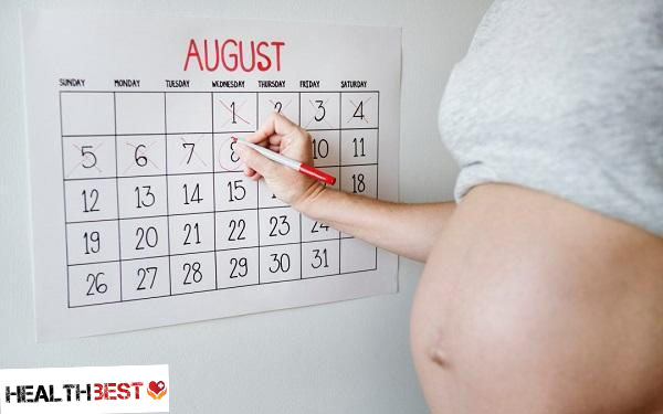 How many Weeks is a Pregnancy