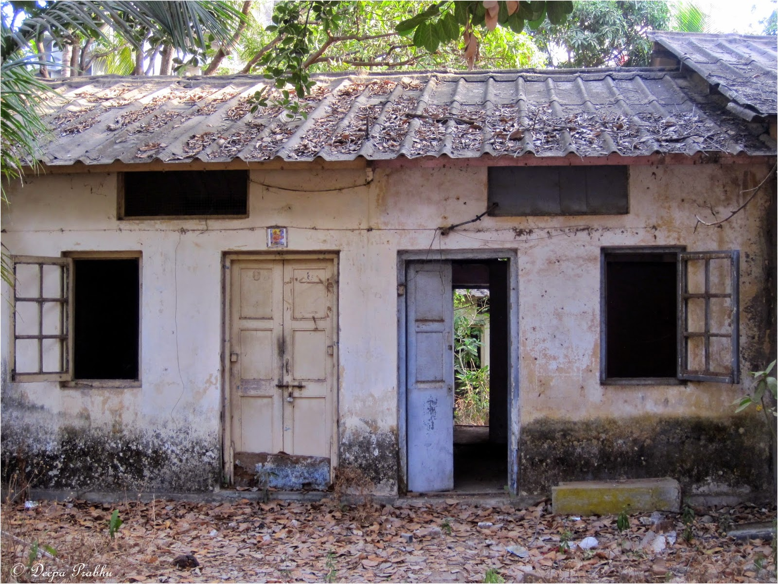 Thursday Challenge - ABANDONED (Buildings, Cars, Things in