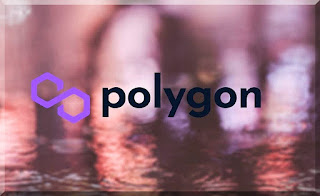 Polуgon blockchain project got its own PolуgonScan explorer