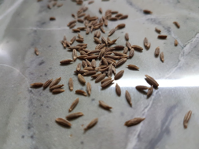 Spices Business Idea Buy and Sell Cumin Seed Business - Cumin Seeds