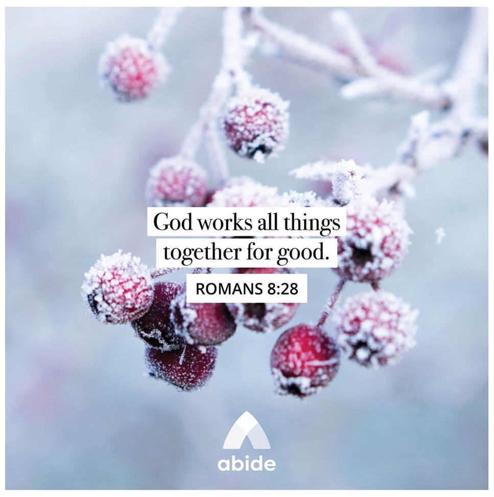 And we know that for those who love God all things work together for good, for those who are called according to his purpose. Romans 8:28