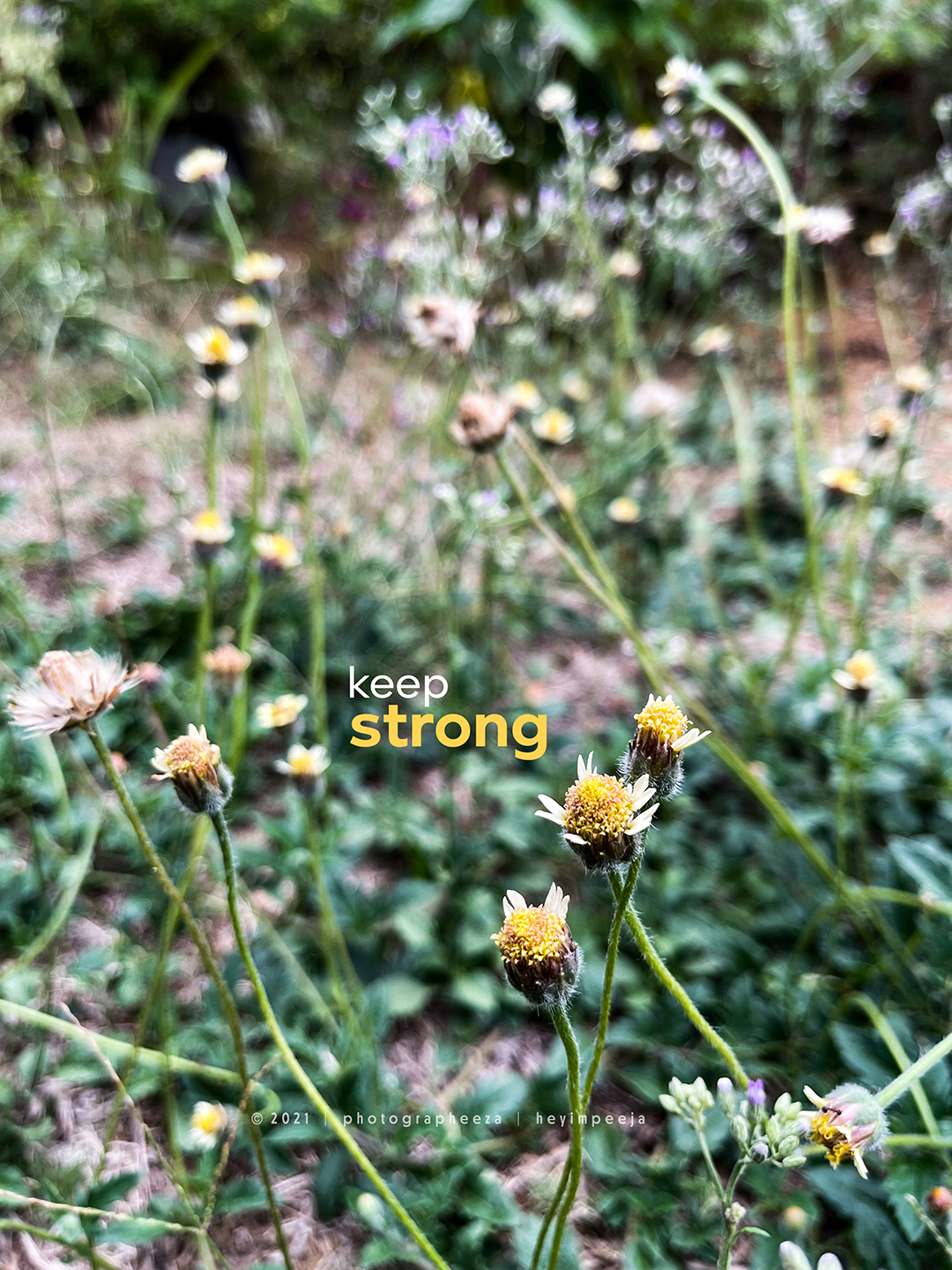 Keep Strong