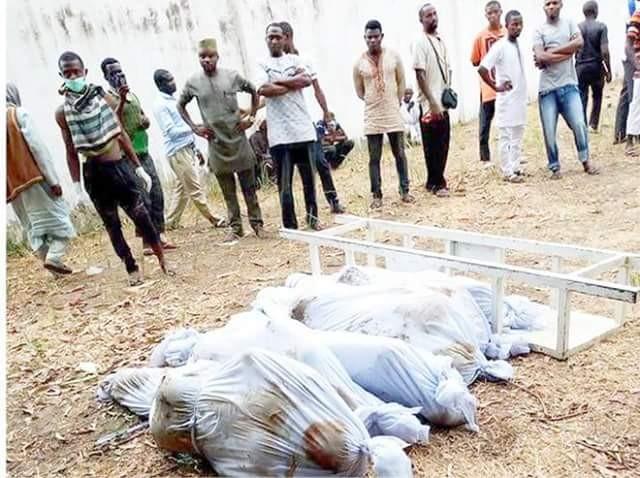 Gunmen Kill 8 in Birnin Gwari