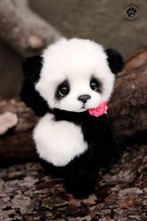 Dan tema kali ini adalah foto profil untuk sosial media seperti whatsapp. 2000 Gambar Panda Keren Background Panda 3d 4d Hd