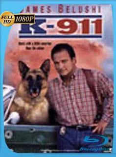 Superagente K-911 (1999) HD [1080p] Latino [Mega] dizonHD