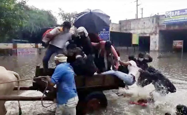 दिल्ली में 'नदी' बनीं सड़कें, बैलगाड़ी पलटी, छपाक से गिर गए लोग - देखें Video