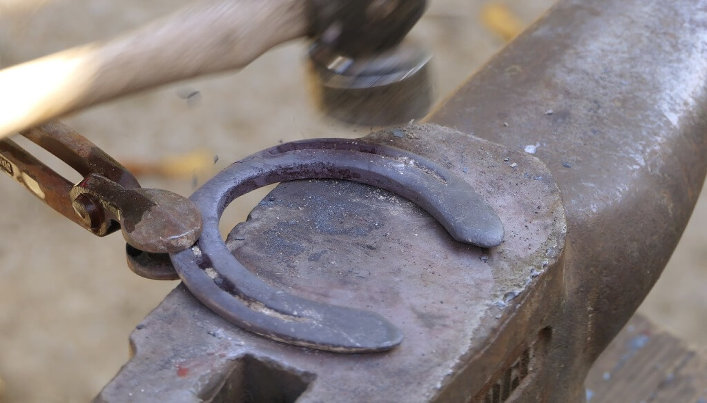 How to find the best farrier school for you