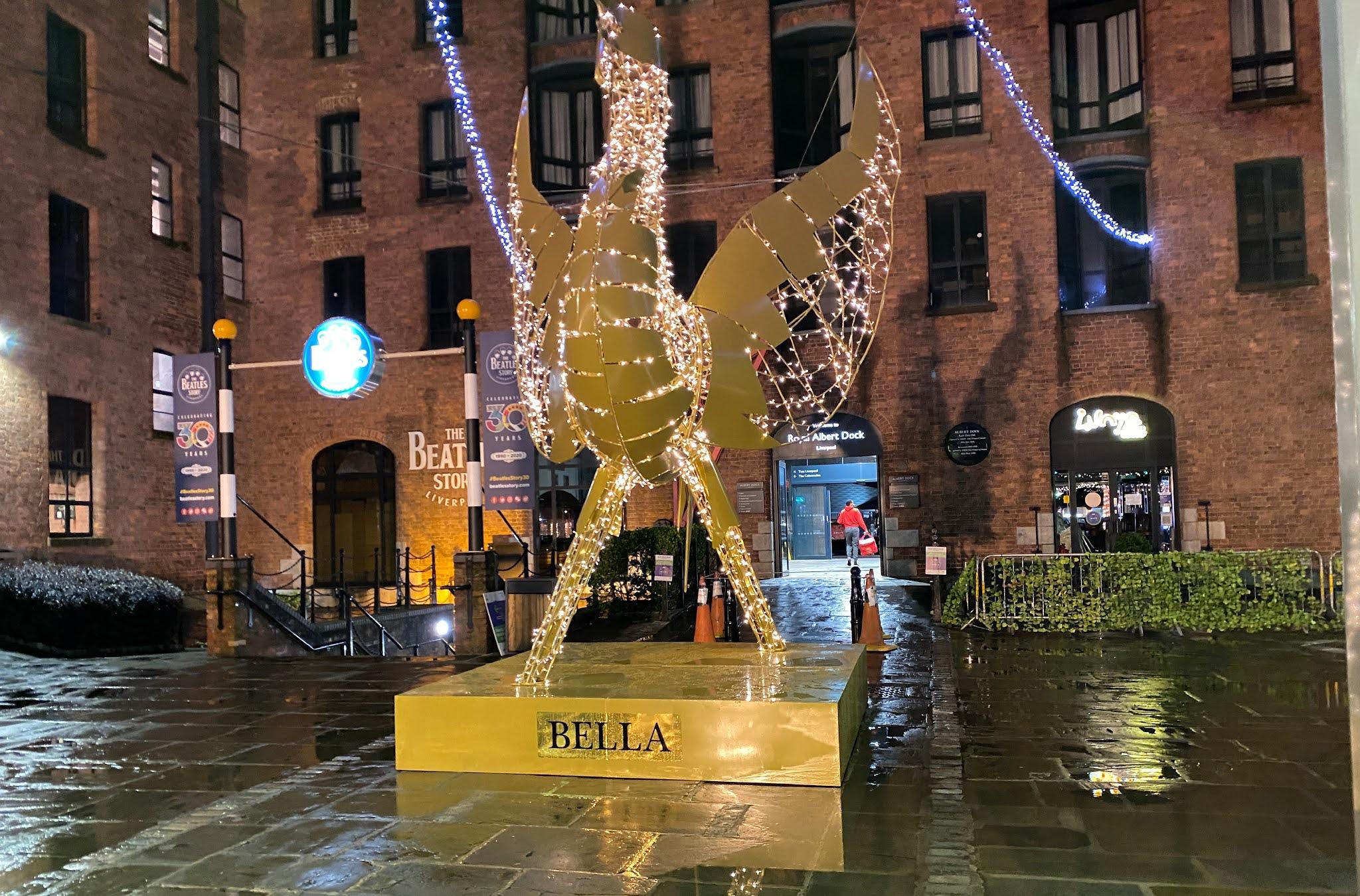 Christmas lights at Albert dock