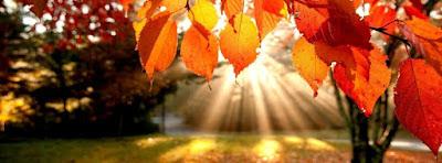Belle couverture facebook automne 5