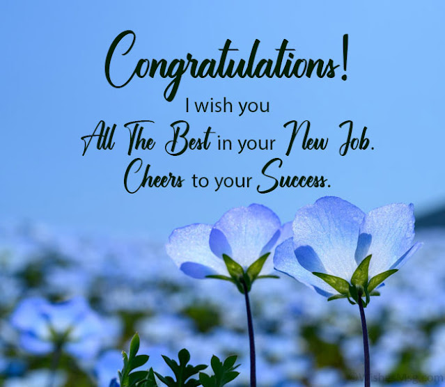 I Wish You All The Best In Your