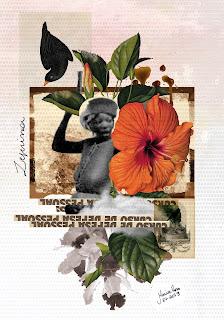 Colagem Zeferina por Maria Rosa