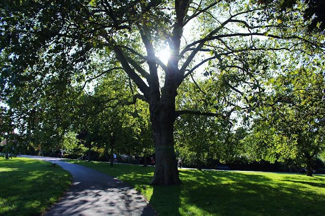 Regent's Park, London - UK lifestyle blog