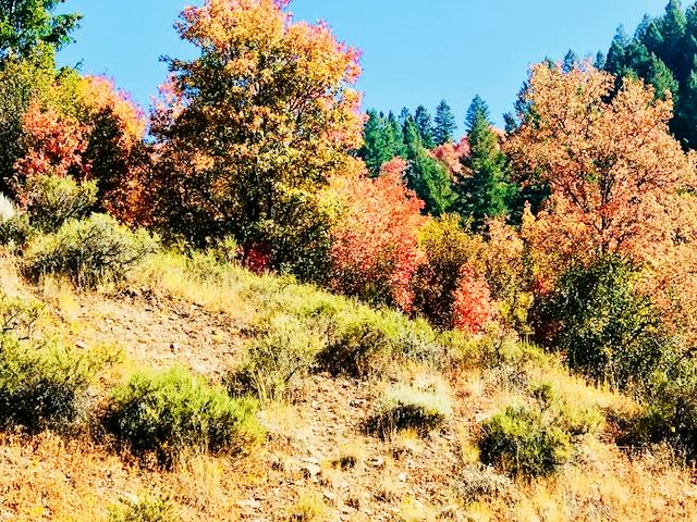 Southeastern-Idaho-Fall