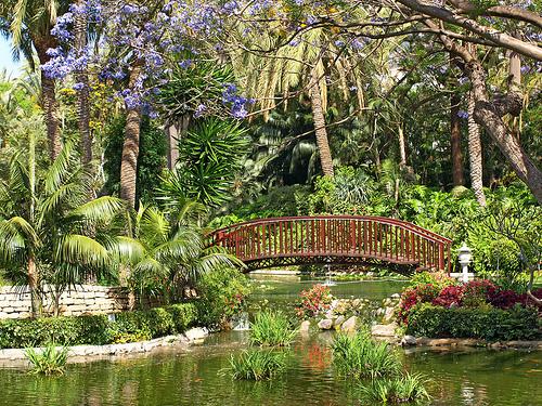 The werewolf of hampshire street life - Botanical garden puerto de la cruz ...