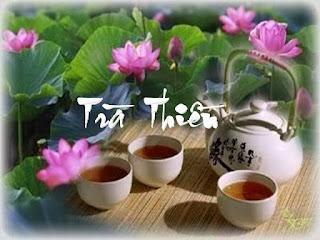 Trà Thiền