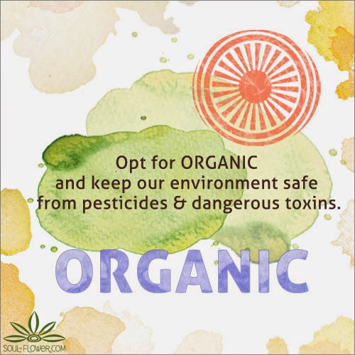 choose+organic - Earth Day Tips & Helpful Articles