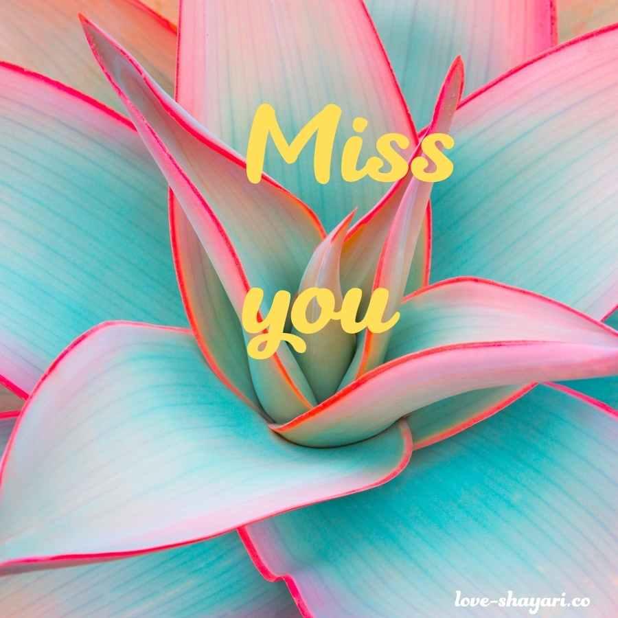 miss u images for husband