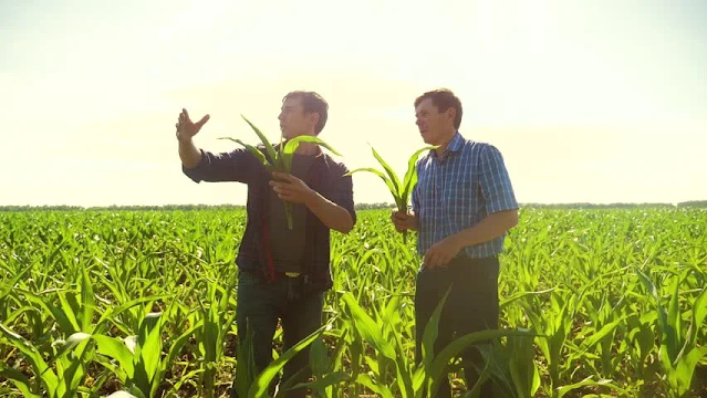 Renungan Harian: Sabtu, 24 Juli 2021 - Penginjil Atau Petani?