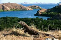 10 Tempat Wisata Terindah di Indonesia