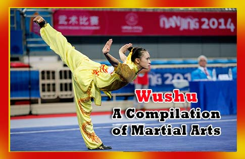Wushu - A Compilation of Martial Arts