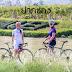 """แนะนำเส้นทางปั่นจักรยานสุดชิลสู่เขาใหญ่ ในงาน """"ปั่น ปัน เปลี่ยน"""""""
